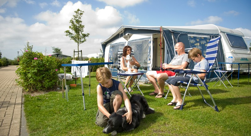 Go camping with your family and your dog!
